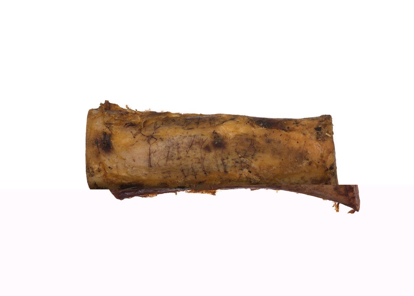 Badsturøkt Bein Medium